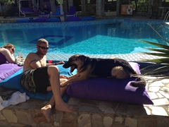 Robby plays with Daisy, (one of Atilla's dogs) by the poolside; Atilla's Getaway