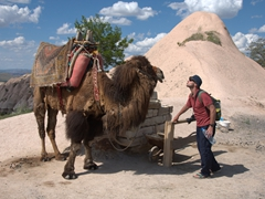 Robby getting some camel love; Uchisar