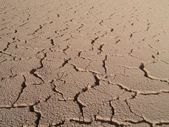 Cracked mud desert