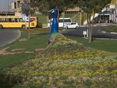 Peacock roundabout; Yazd