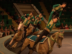 The culmination of the Akhal-Teke horse demonstration; Turkmen State Circus