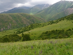 Gorgeous scenery in Aksu-Zhabagly Nature Reserve