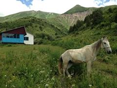 Ranger hut; Aksu-Zhabagly Nature Reserve