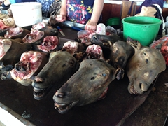 Fancy a goat head?