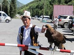 Kyrgyz man exploiting his eagle for tourist photos; Ala Archa National Park