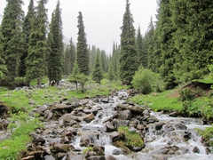The rivers are gushing immediately after the rain storm; Altyn Arashan