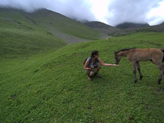 Her reward after slugging it out for a few hours is playing with this baby horse in a beautiful meadow; Altyn Arashan