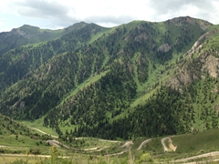 With views like this commonplace in Kyrgyzstan, this lovely country catapulted its way to #1 of all Central Asian countries that we've visited