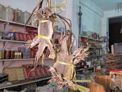Bundles of lizards for sale at a Chinese herbalist/medicine store