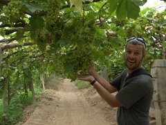 Showing off the vine trellises that Turpan is world famous for