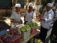 Cheap bundles of grapes for sale; Karez