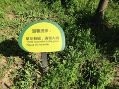 Snake warning; Bingling Thousand Buddha Caves