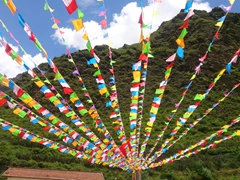 Pretty prayer flags