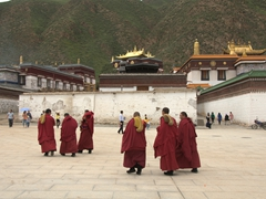 Monks heading back to their quarters after prayer time; Labrang Monastery