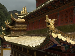 Golden roofs; Langmu Monastery