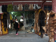 Animal furs for sale; Chuanzhusi