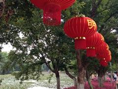 Pretty scene at Green Lake Park in Kunming