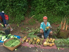 Woman selling pineapple by the road side (5,000 Kip) - super sweet!