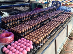 A variety of eggs for sale at the morning market. We couldn't figure out what the pink eggs were