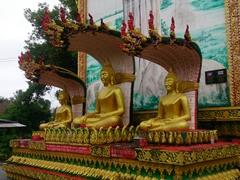 Buddha statues; Wat Si Suman