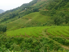 More rice paddy views as we start our descent from Ta Phin village