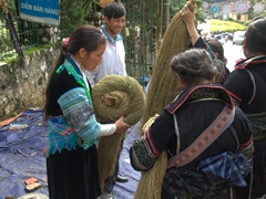 Rolling balls of hemp in Sapa