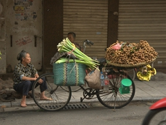Fruit vendor in Hanoi's old quarter