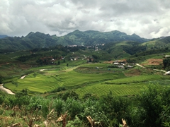 Gorgeous rice paddy scenery on our Sapa trek