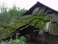 Rustic Hmong dwelling