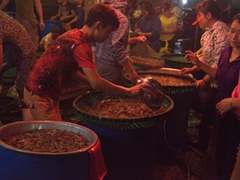 Shrimp vendors; Long Bien market