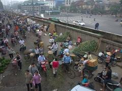 Long Bien market scene