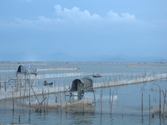 Fishery near Thuan An Beach