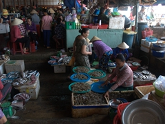 Fresh seafood at Hoi An's morning market