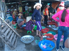 Fish market; Cua Dai Fishing village
