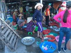 Fish market; Cua Dai Fishing village