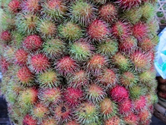 Delicious rambutan for sale