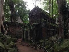Ta Prohm panoramic