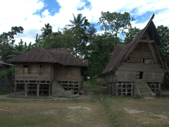 Traditional Batak dwellings