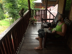 Robby and a monkey having a stare down; Bukit Lawang