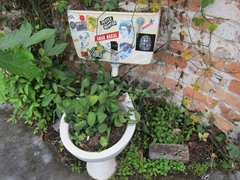 Recycled toilet planter; Hin Bus Depot