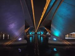 Bridge scene at night