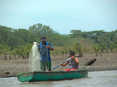 Fishermen compete with crocodiles for the Tarcoles river's fish supply