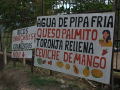 """""""Ceviche de Mango"""" looked quite delicious at this road side stand"""