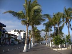 The pedestrian walkway by Puerto Vallarta's malecon