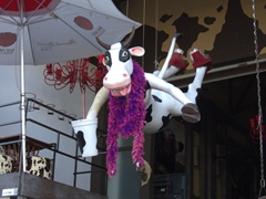 Flying cow at a hip bar on Puerto Vallarta's malecon