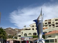 A massive swordfish statue in Cabo's marina
