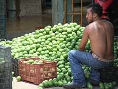 Limes for sale at Oxkutzcab's fruit market