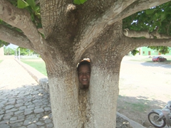 Becky peeps through this oddly shaped tree nearby a Franciscan church in Mani