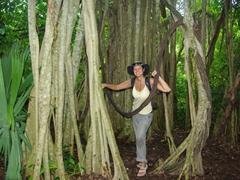 Becky hiding amongst the jungle trees of Grupo Macanxoc, Coba