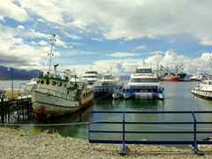 On our way to a Rumbo Sur Beagle Channel tour
